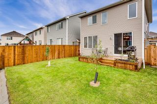 Photo 25: 292 WINDROW Crescent SW: Airdrie Detached for sale : MLS®# C4305724