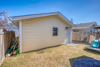 Photo 33: 10 Inverness Place SE in Calgary: McKenzie Towne Detached for sale : MLS®# A1095594