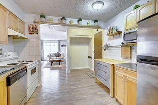 Photo 2: 8 6827 Centre Street NW in Calgary: Huntington Hills Apartment for sale : MLS®# A1133167