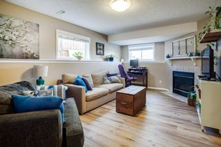 Photo 16: 80 Mt Apex Crescent SE in Calgary: McKenzie Lake Detached for sale : MLS®# A1104238