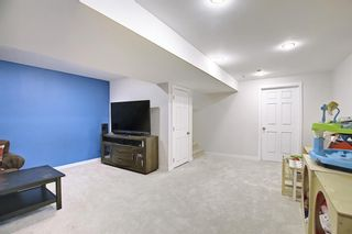 Photo 21: 83 Cranberry Square SE in Calgary: Cranston Detached for sale : MLS®# A1141216
