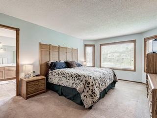 Photo 22: 216 MT COPPER Park SE in Calgary: McKenzie Lake Detached for sale : MLS®# A1025995