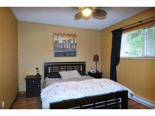 Photo 8: 21161 122ND Avenue in Maple Ridge: Northwest Maple Ridge House for sale : MLS®# V1054323