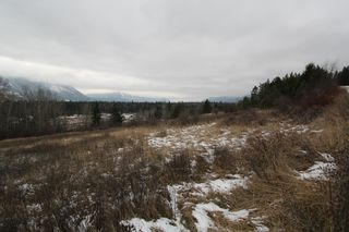 Photo 4: 37 2481 Squilax Anglemont Road in Lee Creek: North Shuswap Land Only for sale (Shuswap)