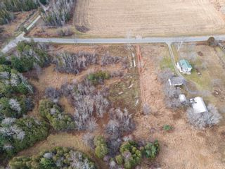 Photo 4:  in Grafton: Land Only for sale : MLS®# 40046274