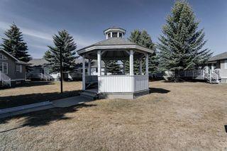 Photo 18: 18 Del Monica Villas NE in Calgary: Monterey Park Row/Townhouse for sale : MLS®# A1135510