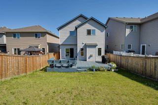 Photo 10: 5619 18 Avenue in Edmonton: Zone 53 House for sale : MLS®# E4252576