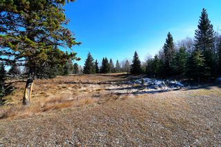 Photo 30: 20.02 Acres +/- NW of Cochrane in Rural Rocky View County: Rural Rocky View MD Land for sale : MLS®# A1065950