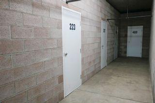 Photo 44: 223 11260 153 Avenue in Edmonton: Zone 27 Condo for sale : MLS®# E4260749