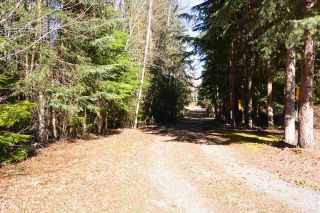 Photo 38: 3805 NIELSEN Road in Smithers: Smithers - Rural House for sale (Smithers And Area (Zone 54))  : MLS®# R2573908