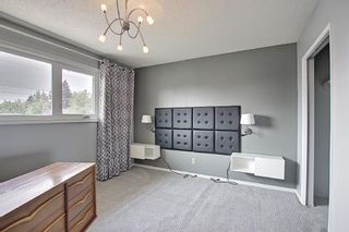 Photo 20: 37 Marbrooke Circle NE in Calgary: Marlborough Detached for sale : MLS®# A1134199