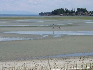 Photo 14: 242 1130 RESORT DRIVE in PARKSVILLE: PQ Parksville Row/Townhouse for sale (Parksville/Qualicum)  : MLS®# 652941
