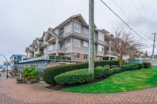 "Photo 1: 203 15621 MARINE Drive: White Rock Condo for sale in ""Pacific Pointe"" (South Surrey White Rock)  : MLS®# R2237254"