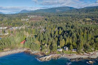 Photo 10: 1551 MCCULLOUGH Road in Sechelt: Sechelt District House for sale (Sunshine Coast)  : MLS®# R2530318