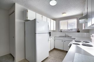 Photo 25: 1419 31 Street SW in Calgary: Shaganappi Detached for sale : MLS®# A1063406