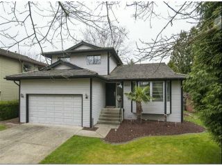 "Photo 1: 16101 12TH Avenue in Surrey: King George Corridor House for sale in ""South Meridian"" (South Surrey White Rock)  : MLS®# F1307556"