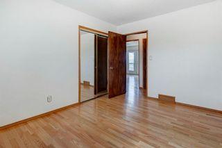 Photo 21: 41 Carolina Drive: Cochrane Detached for sale : MLS®# A1126382
