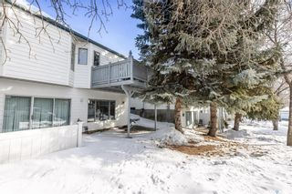 Photo 33: 124 306 La Ronge Road in Saskatoon: Lawson Heights Residential for sale : MLS®# SK843053