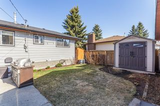 Photo 29: 516 Queen Charlotte Drive SE in Calgary: Queensland Detached for sale : MLS®# A1098339