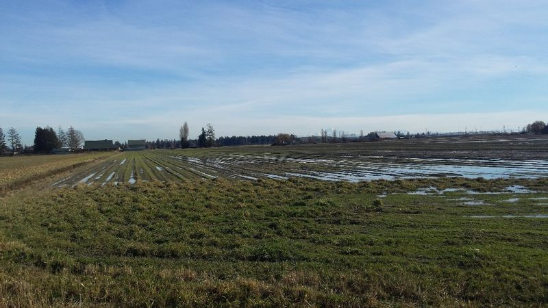 FEATURED LISTING: 5905 64 Street Ladner
