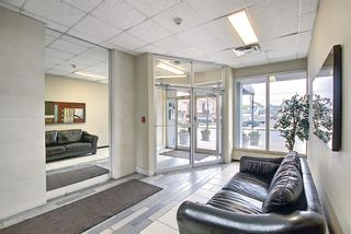 Photo 4: 508 314 14 Street NW in Calgary: Hillhurst Apartment for sale : MLS®# A1117580