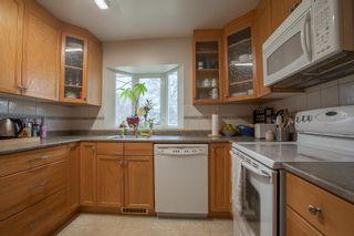 Photo 8: 8735 92B Avenue in Edmonton: Zone 18 House for sale : MLS®# E4249129