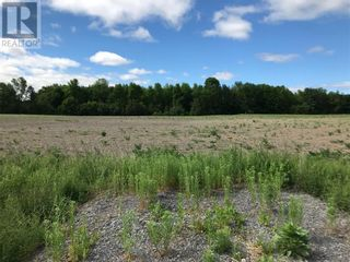 Photo 2: N/A DOMAINE STREET in St Eugene: Vacant Land for sale : MLS®# 1244115