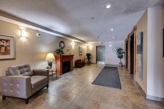 Photo 3: 332 278 SUDER GREENS Drive in Edmonton: Zone 58 Condo for sale : MLS®# E4258444
