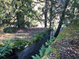 Photo 18: 0 Riverbend Rd in : Na Extension Unimproved Land for sale (Nanaimo)  : MLS®# 868867