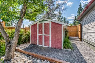 Photo 37: 2907 13 Avenue NW in Calgary: St Andrews Heights Detached for sale : MLS®# A1137811