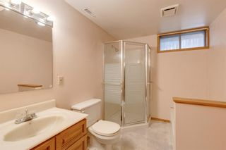 Photo 30: 2935 Burgess Drive NW in Calgary: Brentwood Detached for sale : MLS®# A1132281