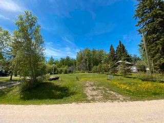 Photo 8: 157 CRYSTAL SPRINGS Drive: Rural Wetaskiwin County Rural Land/Vacant Lot for sale : MLS®# E4235152