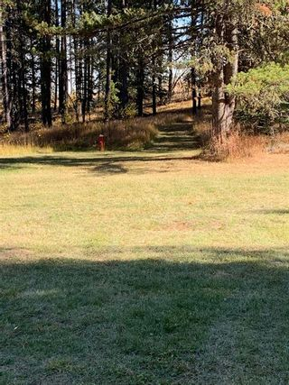 Photo 38: TWP ROAD 283 WEST OF DARTIQUE HALL: Bottrel Agriculture for sale : MLS®# A1152078