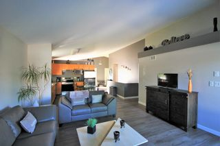 Photo 8: 8 LeGal Bay in St Adolphe: R07 Residential for sale : MLS®# 202021212