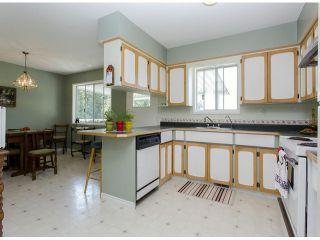 Photo 6: 29086 BUCHANAN Avenue in Abbotsford: Bradner House for sale : MLS®# F1418255