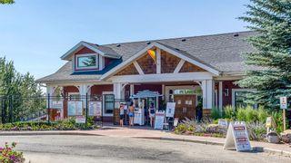 Photo 49: 228 Auburn Shores Landing SE in Calgary: Auburn Bay Detached for sale : MLS®# A1127267