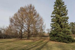 Photo 45: 9123 74 Avenue in Edmonton: Zone 17 House Half Duplex for sale : MLS®# E4241218