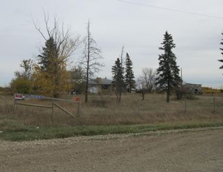 Photo 11: 55101 RR 270: Rural Sturgeon County Rural Land/Vacant Lot for sale : MLS®# E4265205