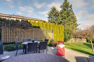 Photo 34: 804 Del Monte Lane in : SE Cordova Bay House for sale (Saanich East)  : MLS®# 863371