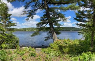 Photo 5: Lot 29 Anderson Drive in Sherbrooke: 303-Guysborough County Vacant Land for sale (Highland Region)  : MLS®# 202115631