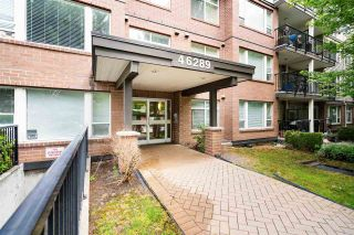 """Photo 2: 109 46289 YALE Road in Chilliwack: Chilliwack E Young-Yale Condo for sale in """"Newmark"""" : MLS®# R2590881"""