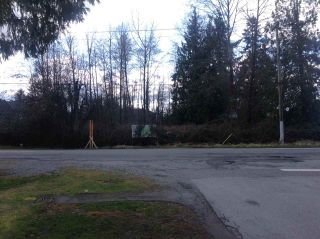 Photo 4: 15864 112 Avenue in Surrey: Fraser Heights Land for sale (North Surrey)  : MLS®# R2554644