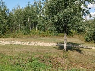 Photo 3: 85 51422 RGE RD 195: Rural Beaver County House for sale : MLS®# E4261455