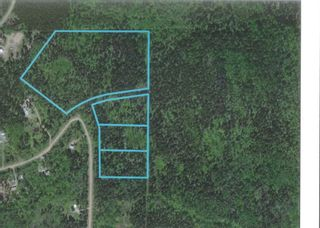 """Photo 2: LOT 9 GRANTHAM Road in Smithers: Smithers - Rural Land for sale in """"Grantham"""" (Smithers And Area (Zone 54))  : MLS®# R2604033"""