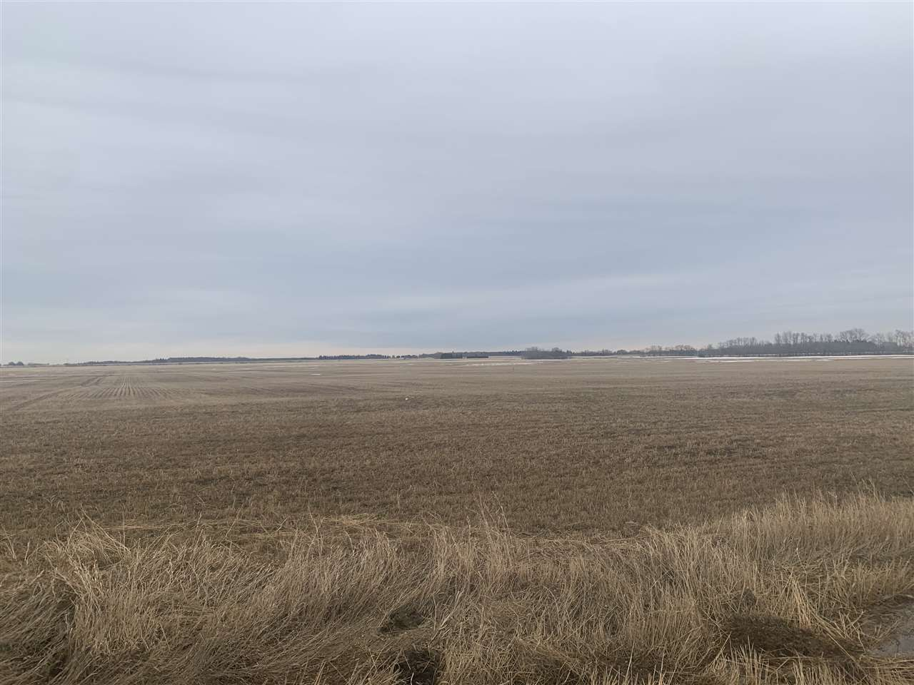 Main Photo: Rg. Rd. 252 Twp. 564: Rural Sturgeon County Rural Land/Vacant Lot for sale : MLS®# E4235323