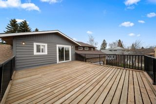 Photo 23: 63 Whiteram Court NE in Calgary: Whitehorn Detached for sale : MLS®# A1107725