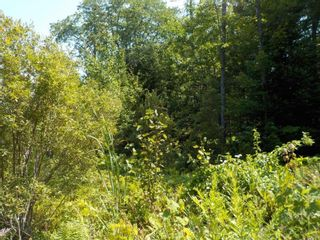 Photo 6: Lot M-1 127 Charleswood Drive in Windsor Junction: 30-Waverley, Fall River, Oakfield Vacant Land for sale (Halifax-Dartmouth)  : MLS®# 202121061