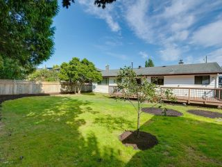 Photo 15: 5794 GROVE Avenue in Delta: Hawthorne House for sale (Ladner)  : MLS®# R2612551