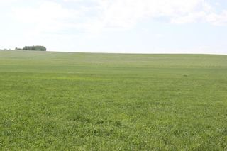 Photo 1: ON Range Road 12 in Rural Rocky View County: Rural Rocky View MD Commercial Land for sale : MLS®# A1116953