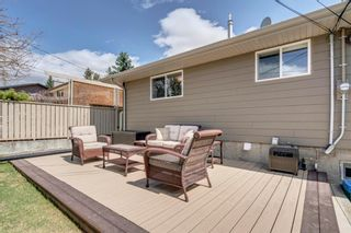 Photo 36: 5007 Nolan Road NW in Calgary: North Haven Detached for sale : MLS®# A1100705